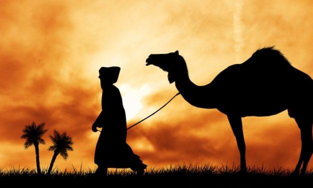 Allah se réjouit du repentir de son serviteur plus que…