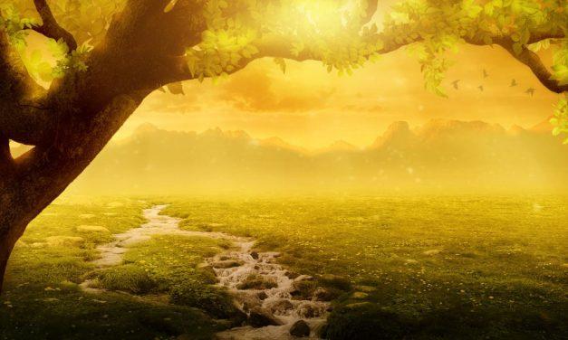 La véracité mène au paradis et le mensonge mène en enfer