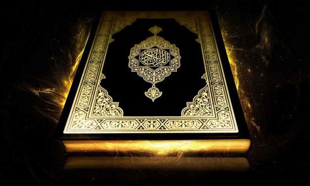 """""""Ils veulent éteindre par leurs bouches la lumière d'Allah"""""""