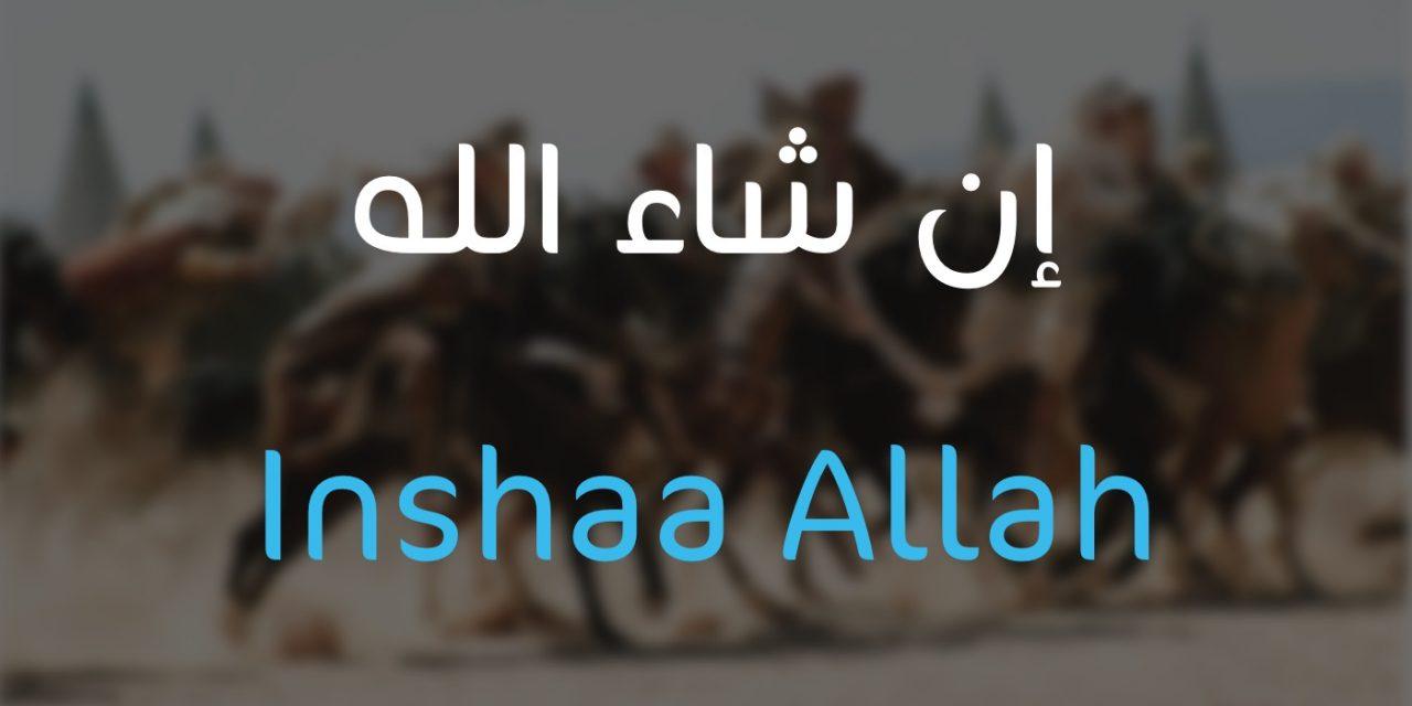 Le jour où le Prophète Salomon ne dit pas «Inchaa Allah»