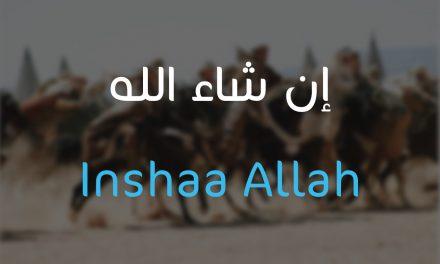 """Le jour où le Prophète Salomon ne dit pas """"Inchaa Allah"""""""
