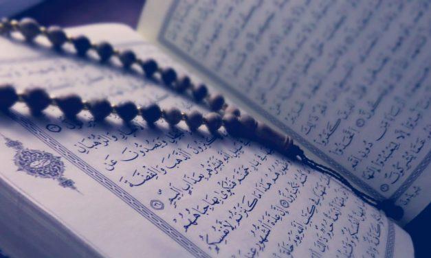 Le jour où les ennemis d'Allah seront rassemblés en masse vers le Feu